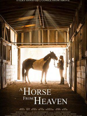 Небесный конь / A Horse from Heaven (2018)