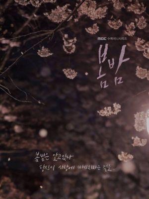 Cмотреть Весенняя ночь 1 сезон 14 серия онлайн в Хдрезка качестве 720p
