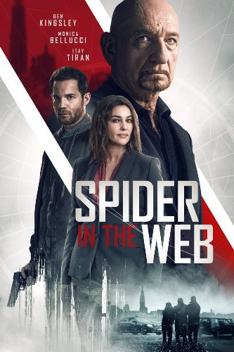 Паук в паутине / Spider in the Web (2019)