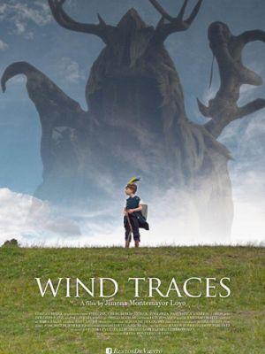 Следы ветра / Restos de viento (2017)