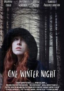 Однажды зимней ночью