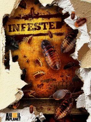 Cмотреть Вторжение паразитов 1 сезон 3 серия онлайн на Хдрезка качестве 720p