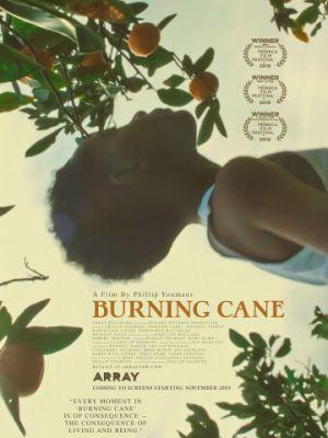 Горящий тростник / Burning Cane (2019)