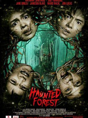 Лес призраков / Haunted Forest (2017)