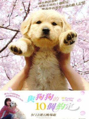10 обещаний моей собаке / Inu to watashi no 10 no yakusoku
