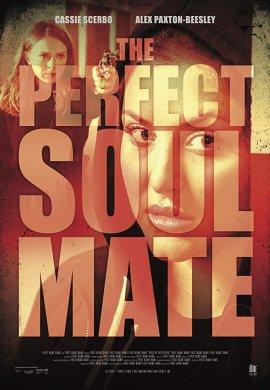 Cмотреть Родственные души / The Perfect Soulmate онлайн на Хдрезка качестве 720p