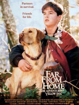 Далеко от дома: Приключения желтого пса / Far from Home: The Adventures of Yellow Dog