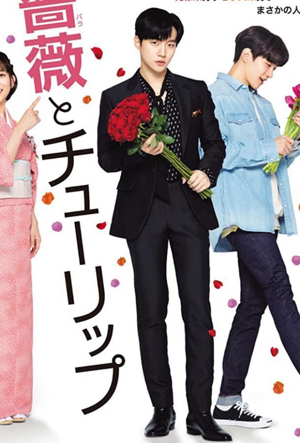Роза и тюльпан