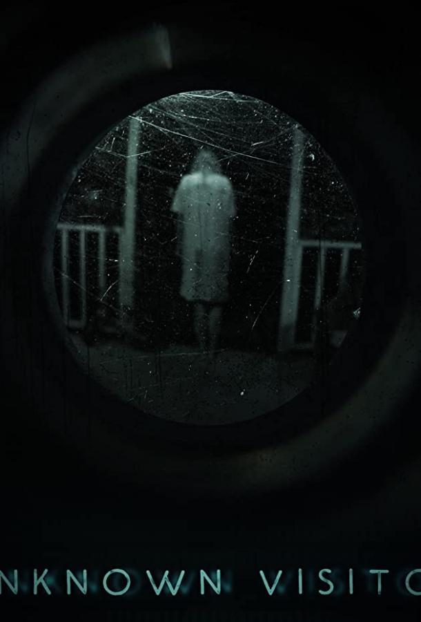 Незнакомый гость