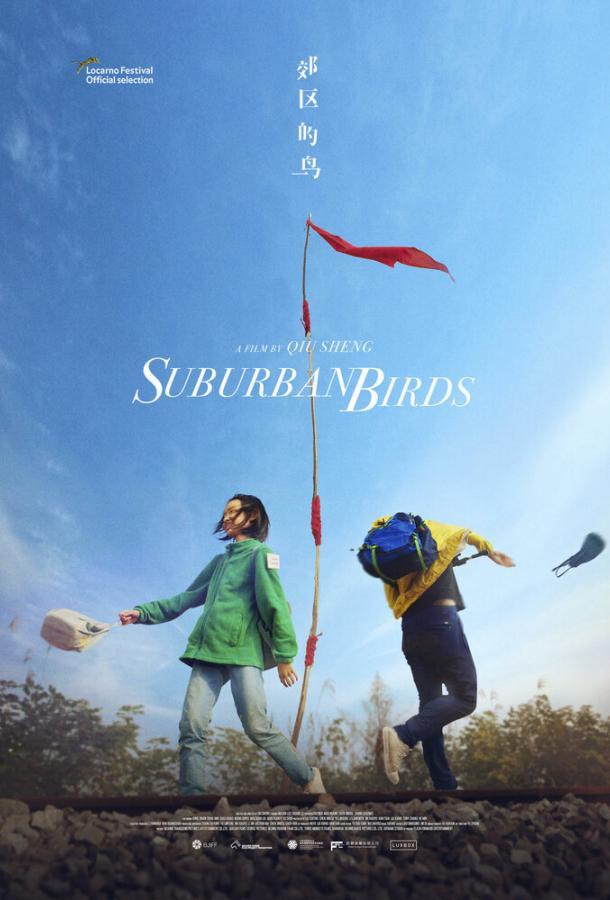 Пригородные птицы