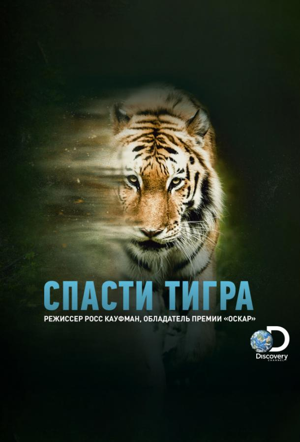 Animal Planet: Спасти тигра