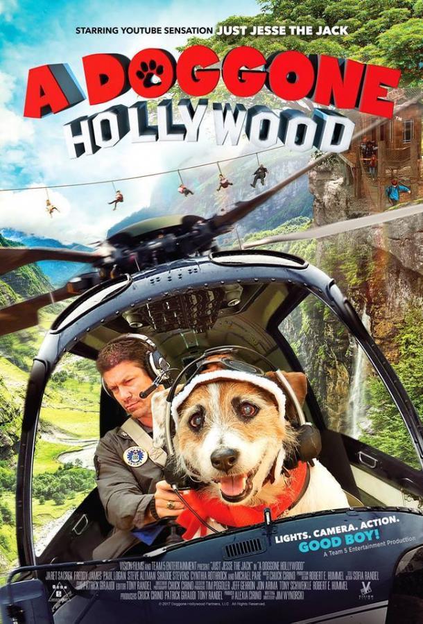 Собачий побег из Голливуда