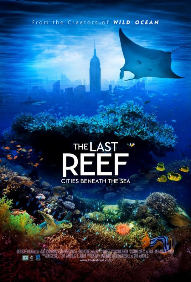 Последний риф