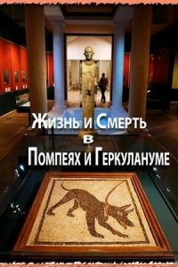 Жизнь и смерть в Помпеях и Геркулануме / The Other Pompeii: Life & Death in Herculaneum (2013)