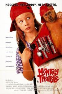 Неприятности с обезьянкой / Monkey Trouble (1994)