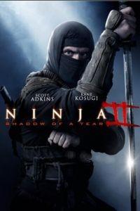 Ниндзя 2 / Ninja: Shadow of a Tear (2013)