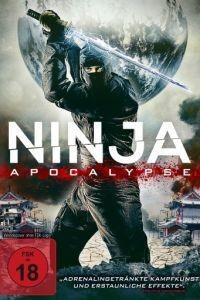 Ниндзя апокалипсиса / Ninja Apocalypse (2014)