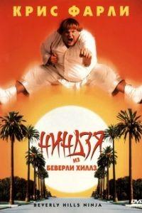 Ниндзя из Беверли Хиллз / Beverly Hills Ninja (1997)