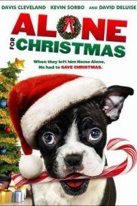 Одни на Рождество / Alone for Christmas (2013)