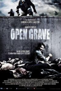 Открытая могила / Open Grave (2013)