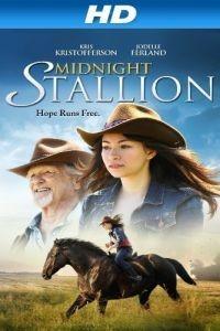 Полночный жеребец / Midnight Stallion (2013)