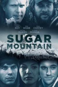 Сахарная гора / Sugar Mountain (2016)