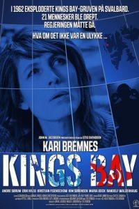 Дело «Кингс Бэй» / Kings Bay (2017)
