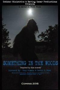 Нечто из леса / Something in the Woods (2016)