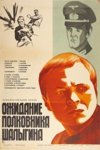 Ожидание полковника Шалыгина (1981)