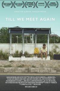 Пока мы не встретимся снова / Till We Meet Again (2016)