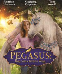 Пони с перебитым крылом / Pegasus: Pony with a Broken Wing (2019)