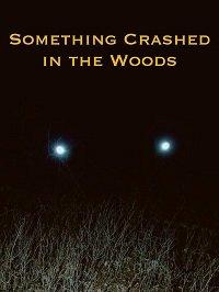 Крушение в лесу / Something Crashed in the Woods