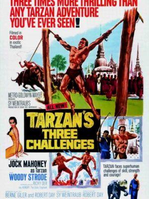 Три испытания Тарзана / Tarzan's Three Challenges (1963)