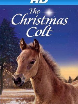 Рождественский жеребёнок / The Christmas Colt