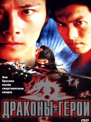 Драконы-герои / Dragon Hero