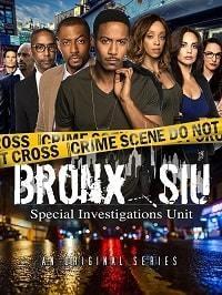 Бронкс: отдел спецрасследований