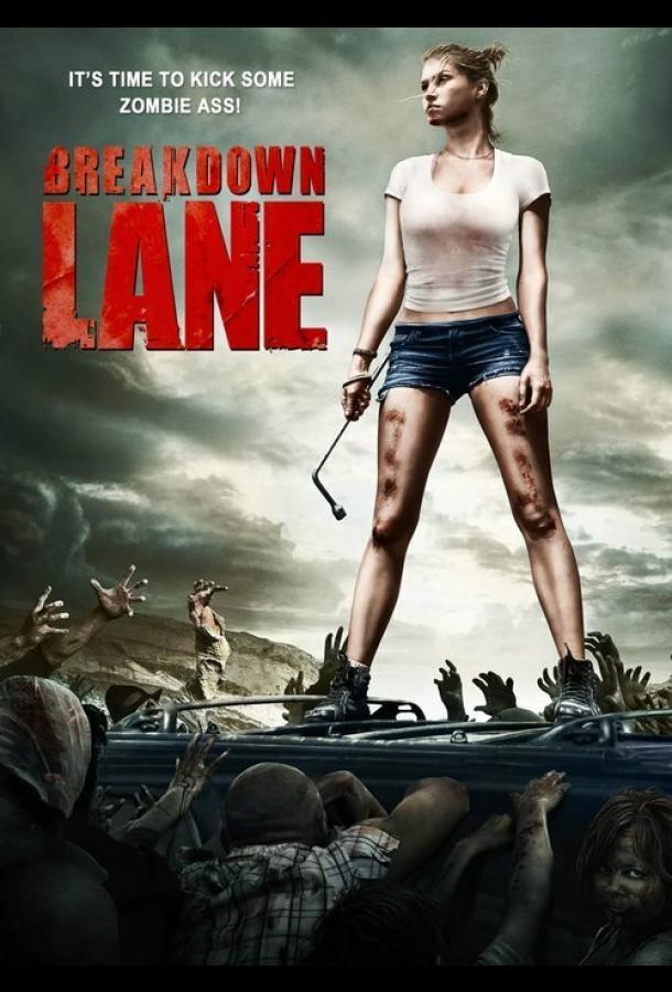 Аварийная остановка / Breakdown Lane