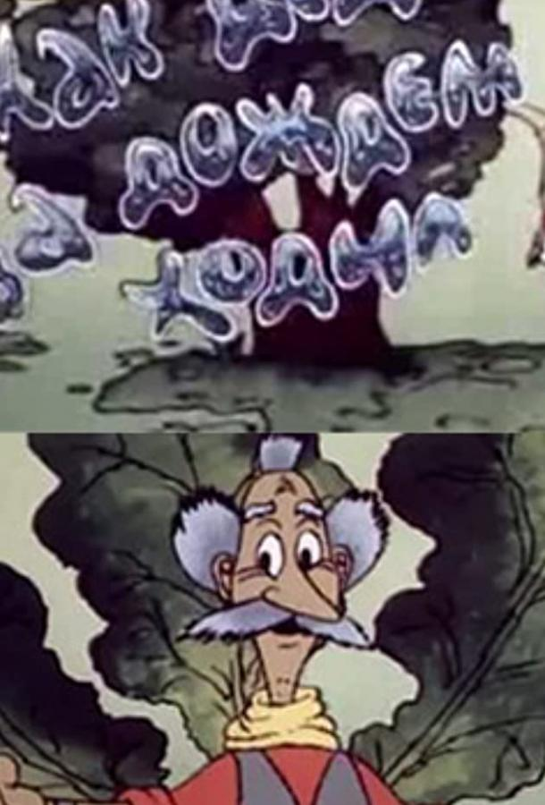 Как дед за дождём ходил